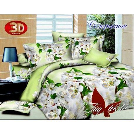Комплект постельного белья Созерцание с компаньоном