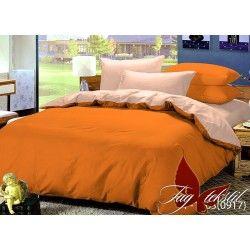 Комплект постельного белья P-1263(0917)