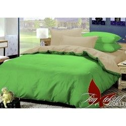 Комплект постельного белья P-0146(0813)