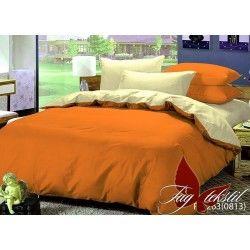 Комплект постельного белья P-1263(0813)